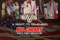 Elvis a night to remember